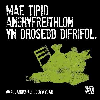 Fly-Tipping is a serious crime logo - Welsh.jpg