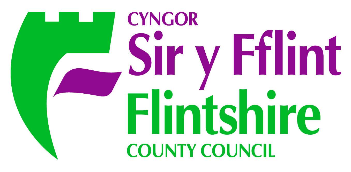 Flintshire CC • CMYK.jpg