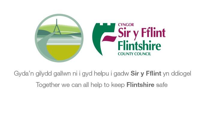Keeping Flintshire safe.jpg