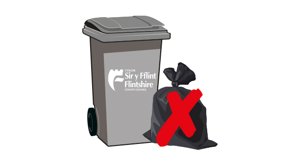 Black bin and side waste.jpg